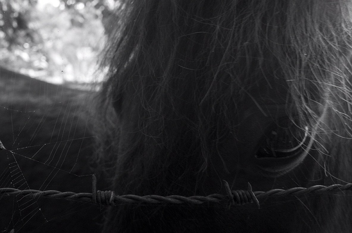 Fotografía de Lara Palomero.